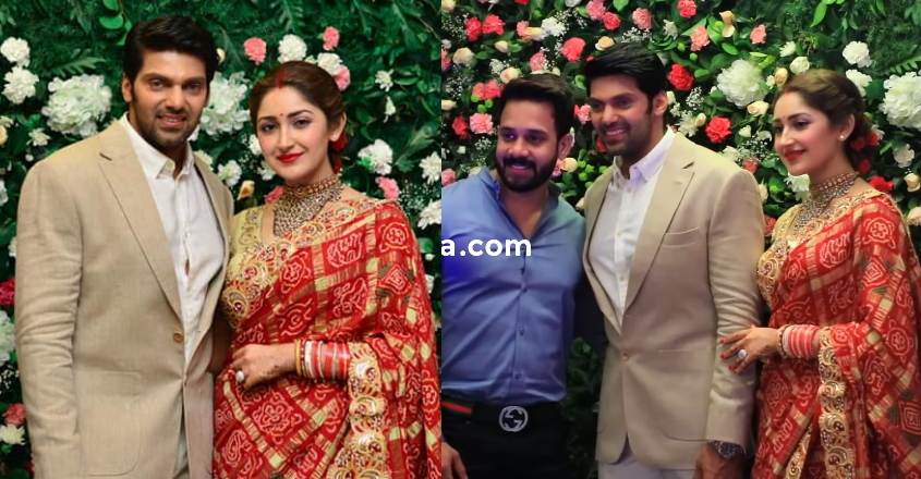 arya-sayyeshaa-wedding-reception
