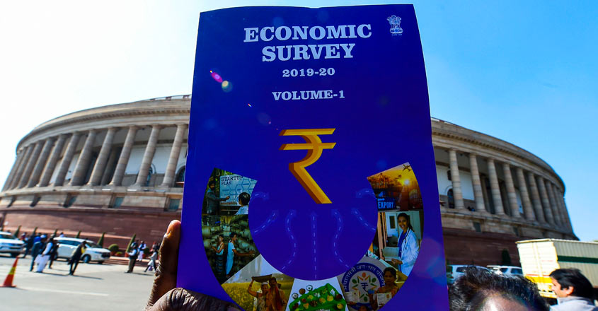 Economic Survey Graphics