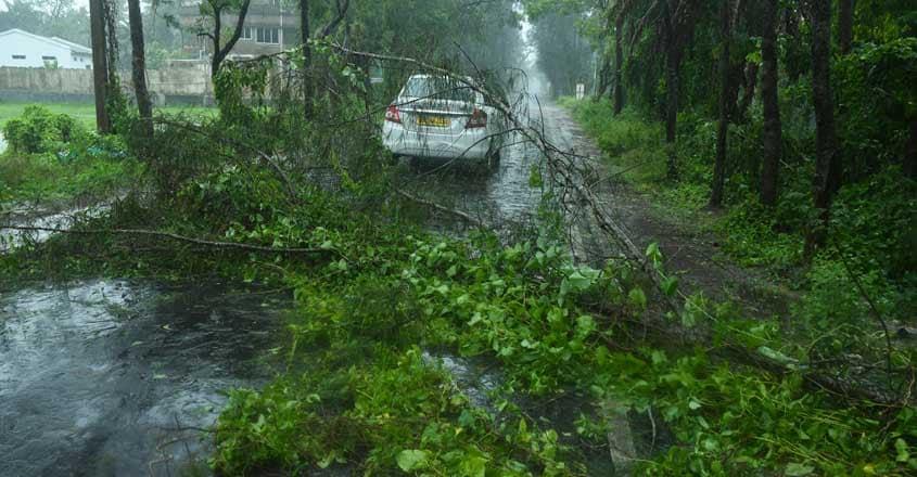 bengal-cyclone-amphan-1