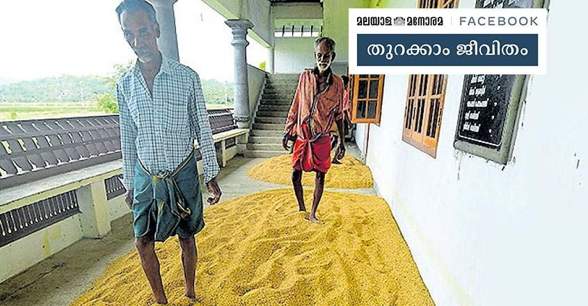 temple-paddy-2