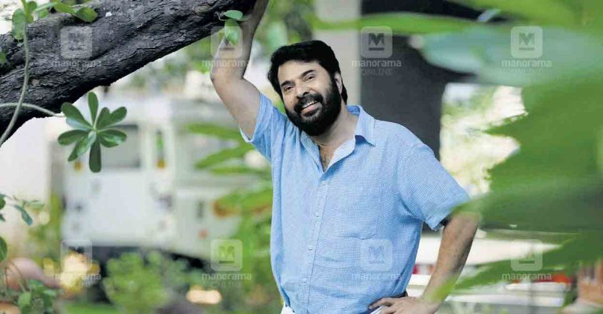 penkonthan-mammootty-turns-70-article-image
