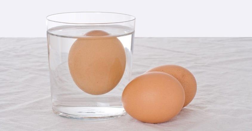 fresh-egg