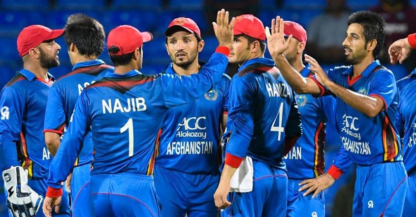 afghanistan-wicket-celebration