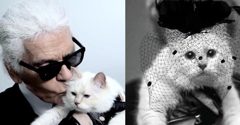 karl-lagerfeld-cat-choupette-life-style