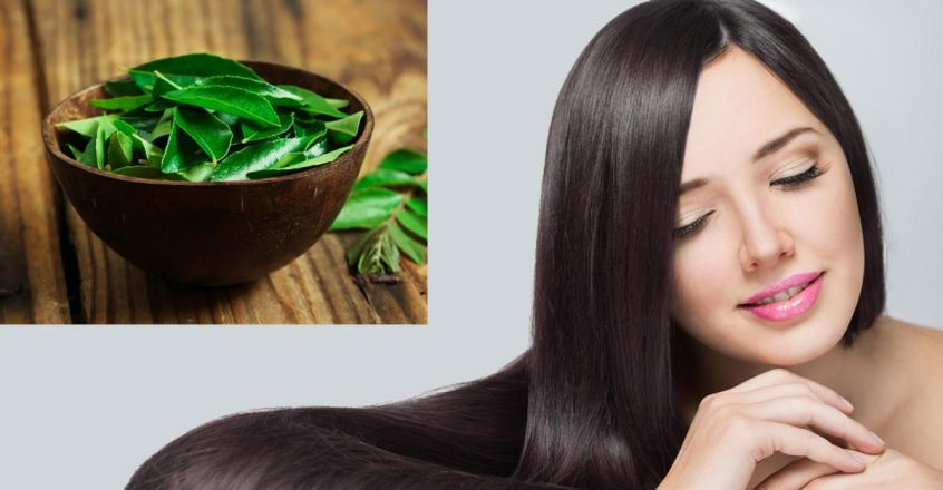 curry-leaves-are-best-for-healthy-and-strong-hair