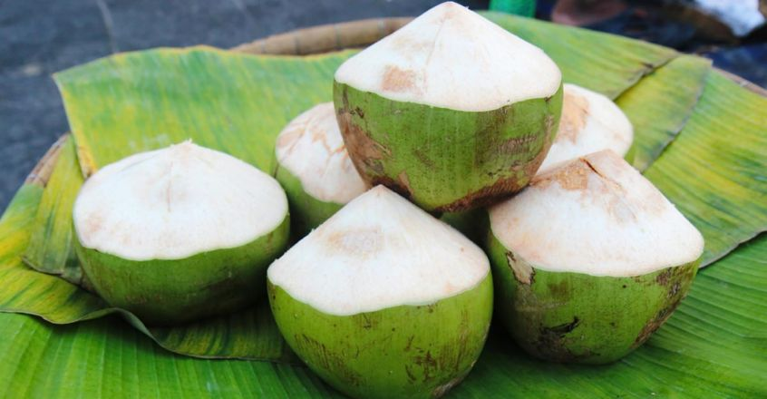 prevent-hair-loss-and-skin-problems-using-tender-coconut