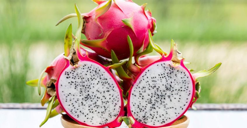 use-dragon-fruit-for-young-and-glowing-skin