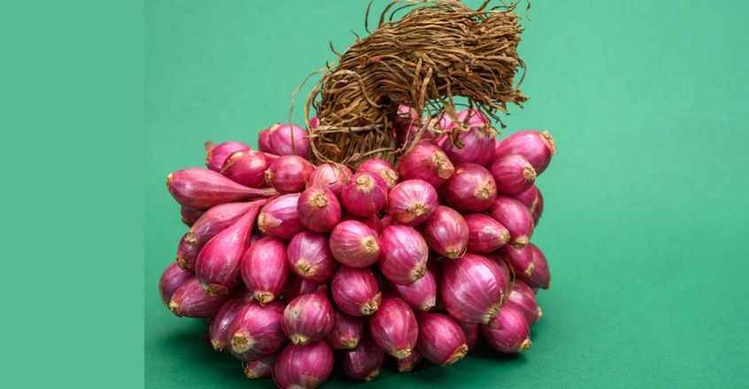 use-onion-to-reduce-dandruff-and-hair-lose