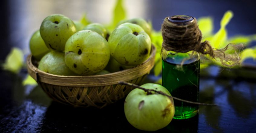 use-amla-to-prevent-hair-loss-and-improve-hair-health