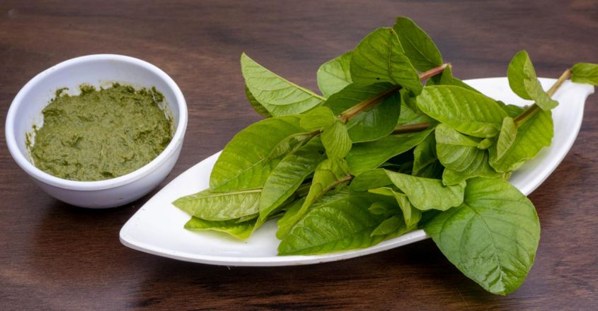 the-best-and-effective-face-pack-using-guava-leaves