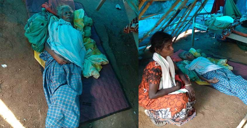 condition-of-adivasi-colonies-in-kerala-fb-post