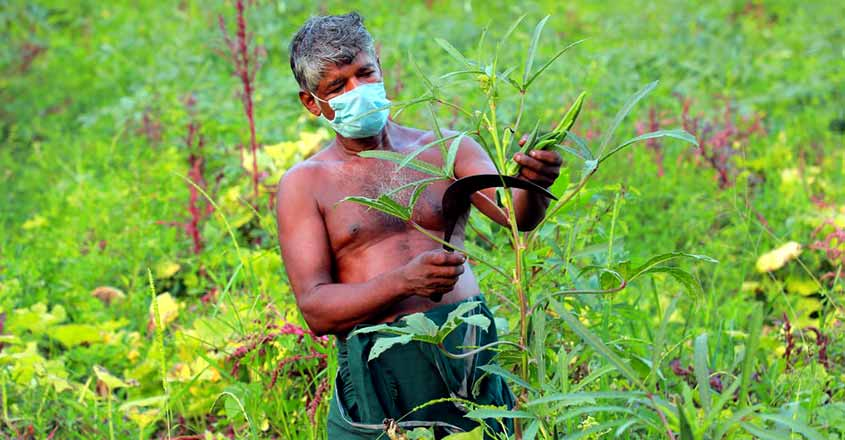 farmers-facing-tough-situation-due-to-lock-down