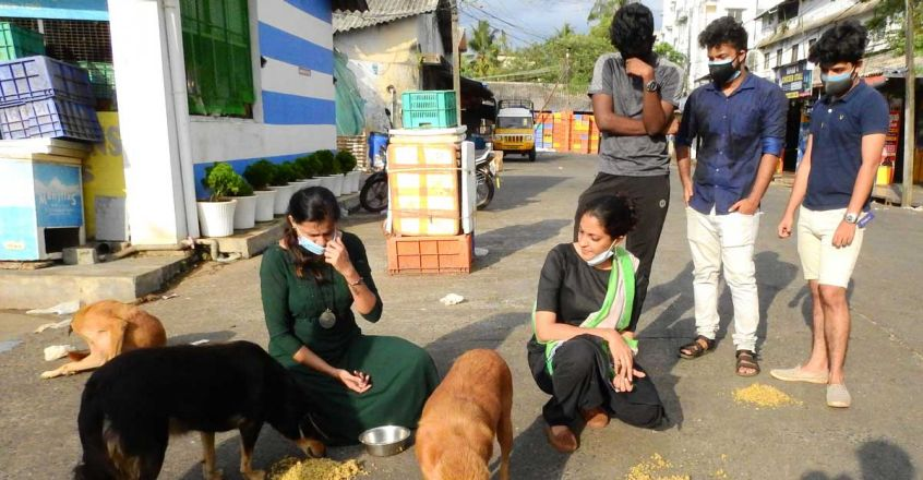 organizations-working-for-people-and-animals-in-crisis-during-lockdown