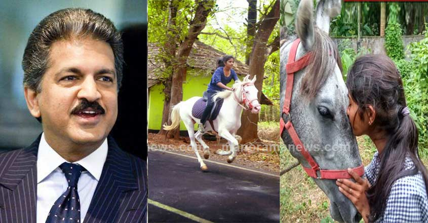anand-mahindra-tweet-on-horse-riding-girl-thrissur
