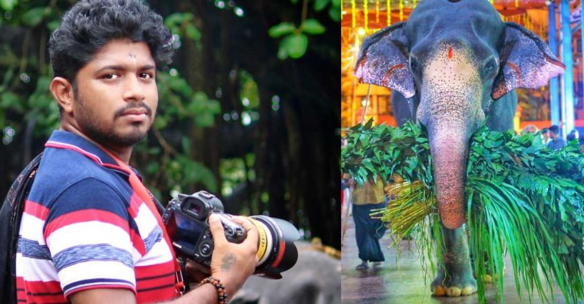 rohith-prakash-choose-his-career-as-a-photographer-because-of-his-love-towards-elephants