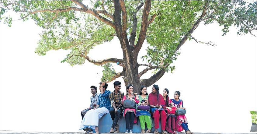 friends-circle-under-tree-in-campus