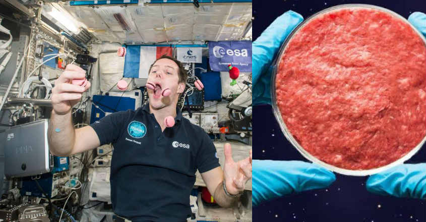 space-station-meat