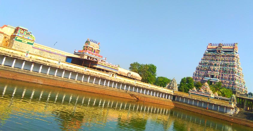 pichavaram-travel