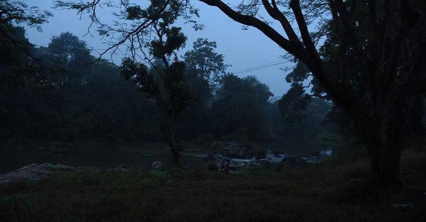 Mudumalai-National-Park8