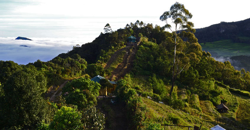 national-parks-in-kerala1