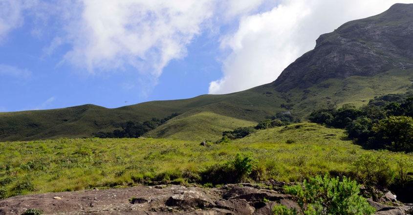 national-parks-in-kerala5