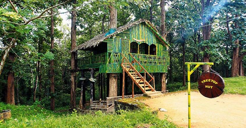 parambikulam-tiger-reserve-stay