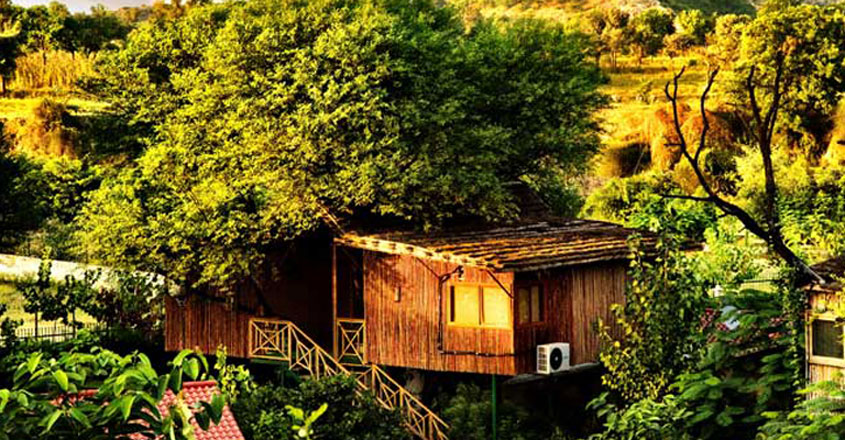 The-Tree-House-Resort,-Jaipur,-Rajasthan