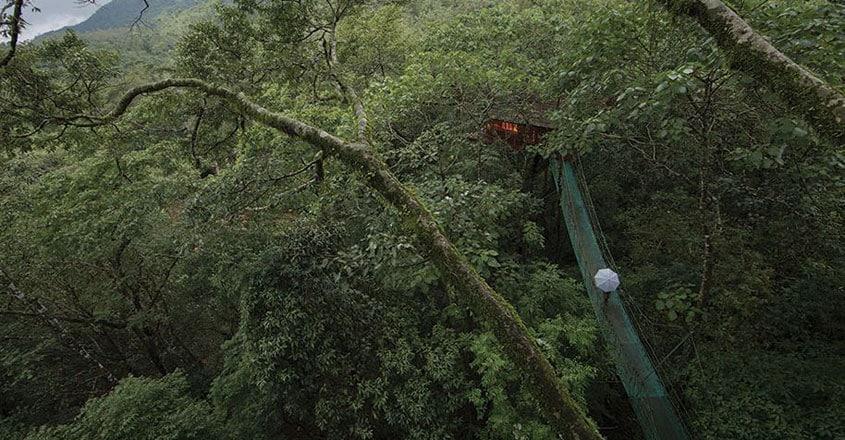 Vythiri-Resort,-Waynad,-Kerala