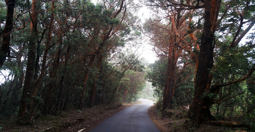 Kinnakorai-Tourism5