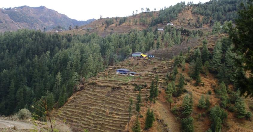 shimla-travel3