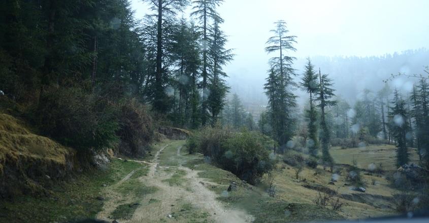 shimla-travel5