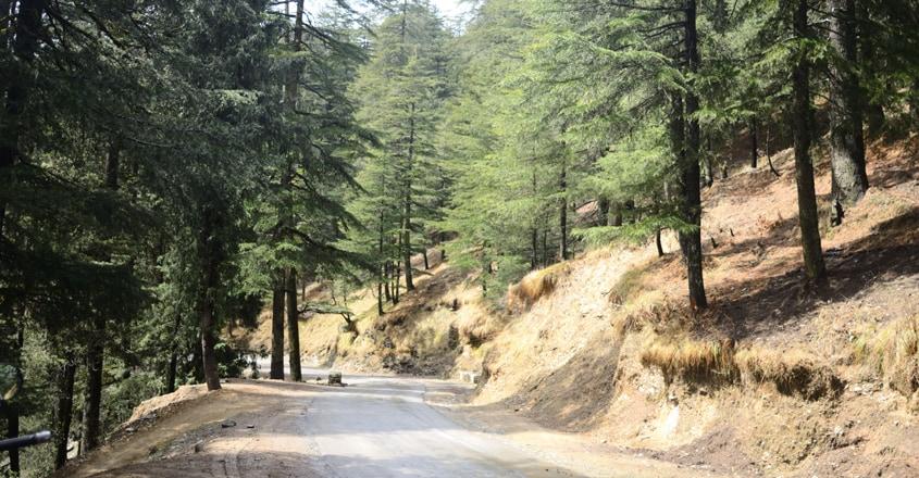 shimla-travel8