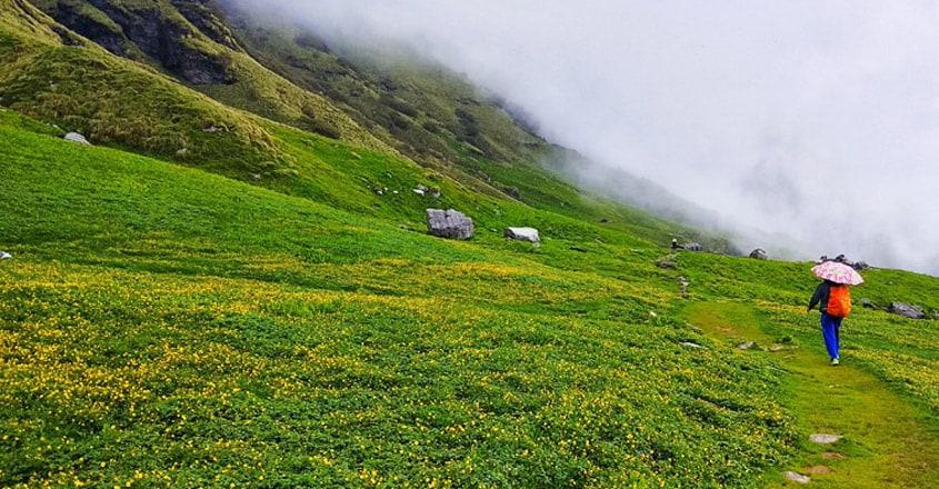Uttarakhand-Valley-of-Flowers-National-Park