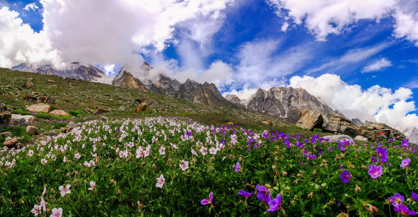 valley-of-flowers-uttarakhand