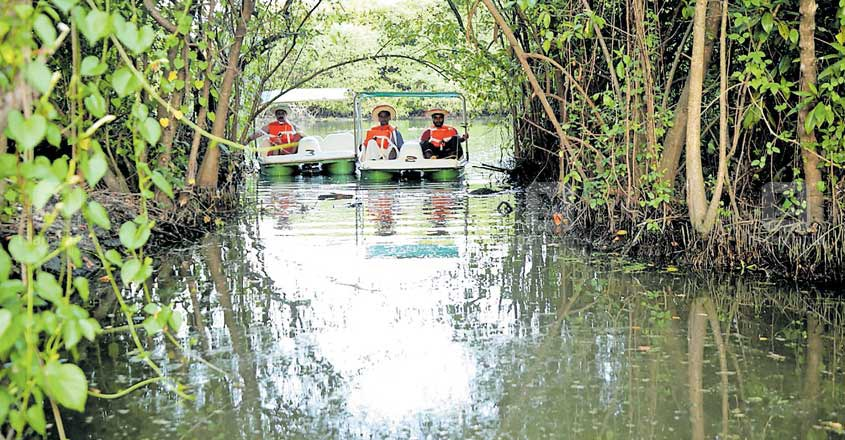 ernakulam-pedal-boating