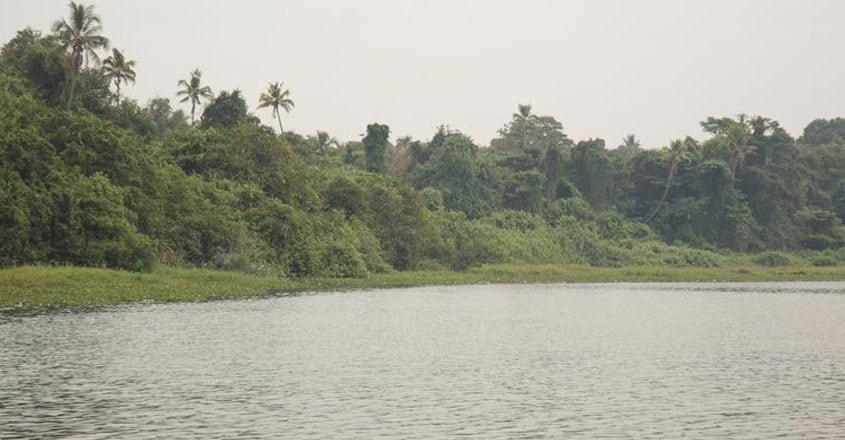 kumarakom-bird-sanctuary3