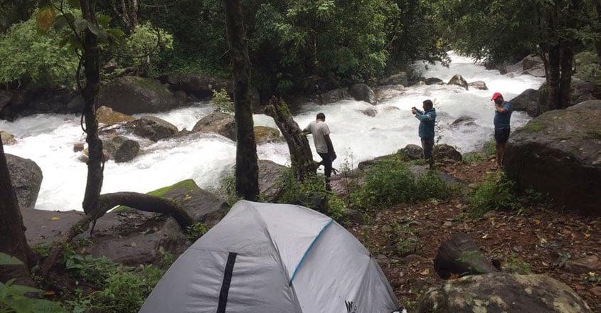 Rainforest-wayanad3