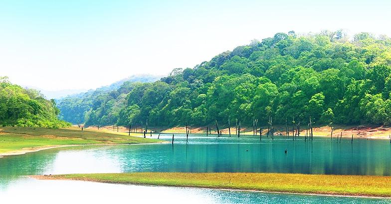 thekkady-lake-view1