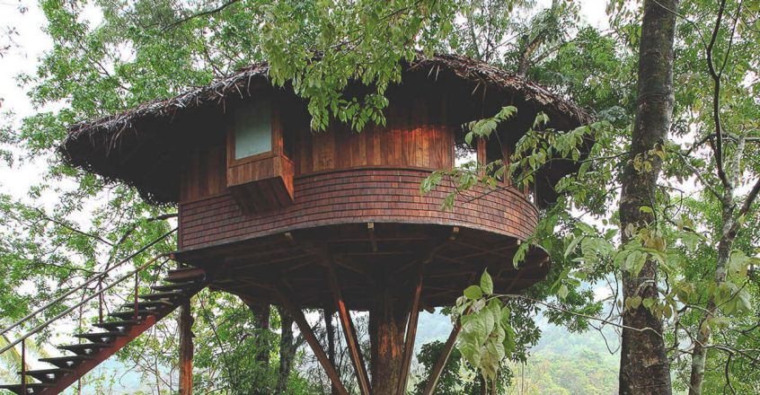 Tree-House-Athirappilly