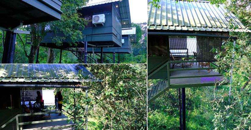 Wayanad-Wildlife-Resort-stay
