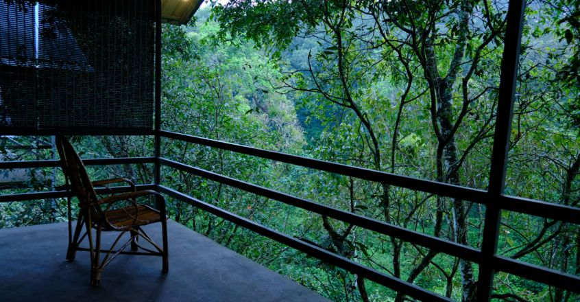 Wayanad-Wildlife-Resort2