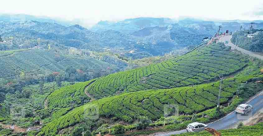 idukki-moonnar-tourist-center