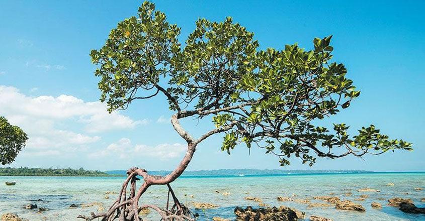 Andaman-trip2