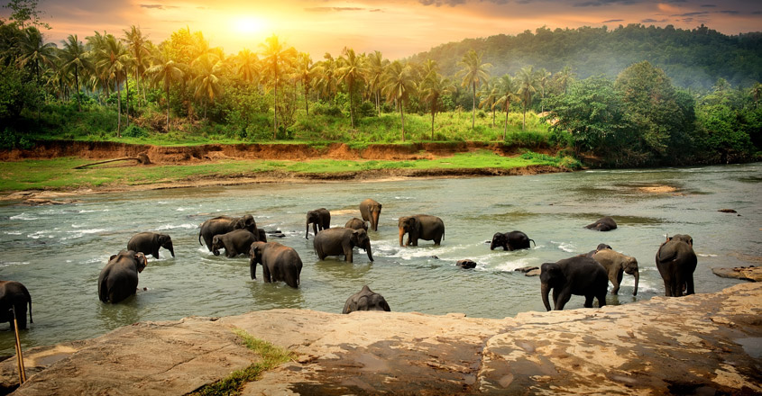srilanka-travel