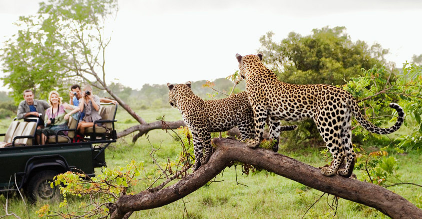 southafrica-trip2